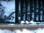 snow-018.jpg